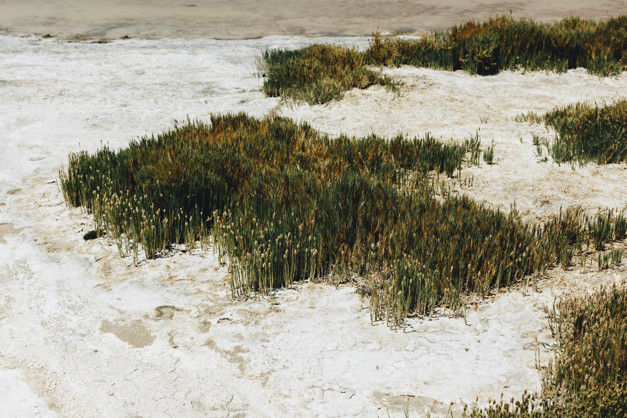 Mael Lambla photographer Chile San pedro atacama desert-49.jpg