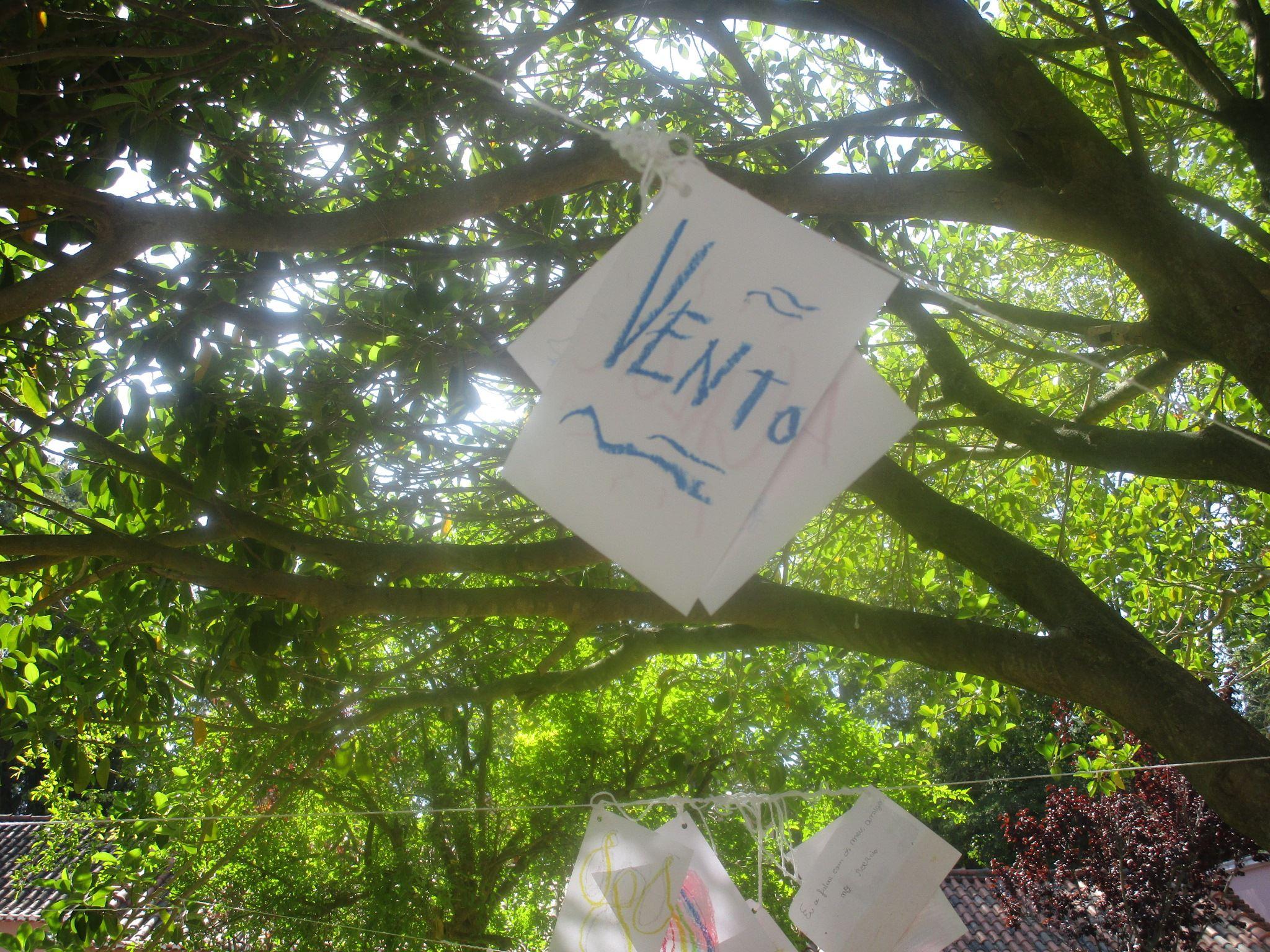 Árvore do invisível.jpg