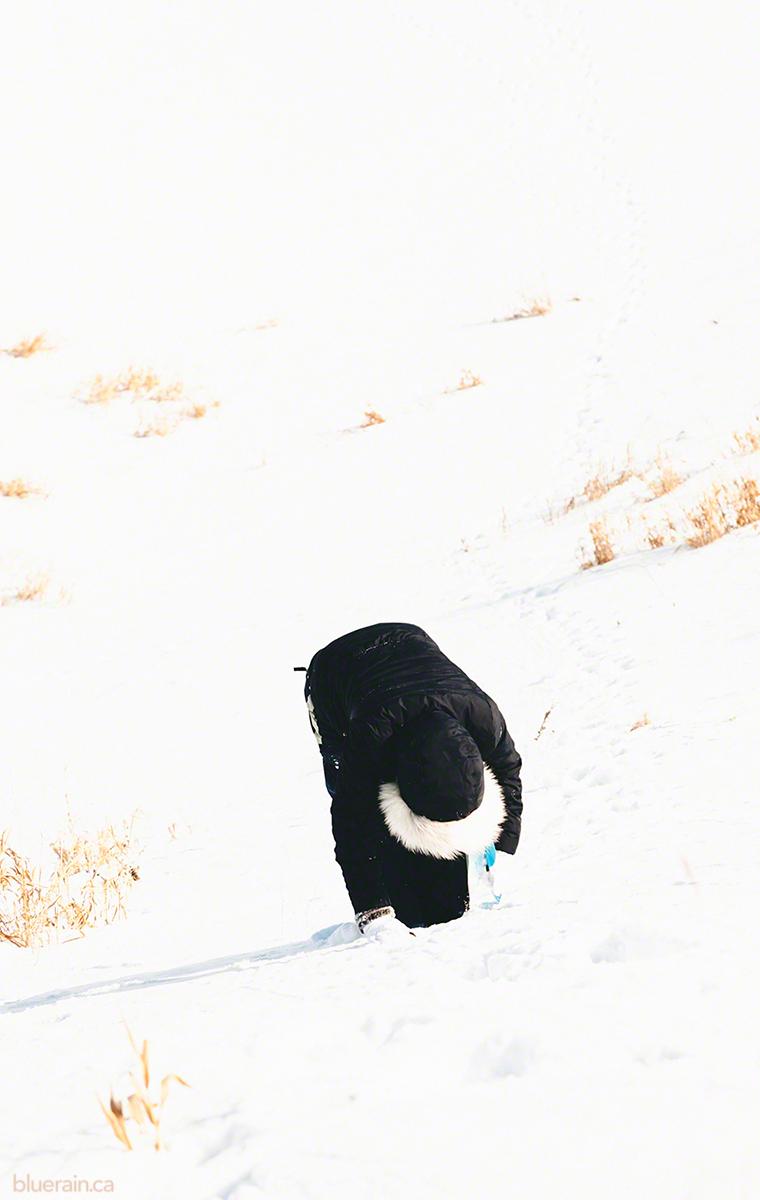 girl-hill-winter-snow-sledding.jpg