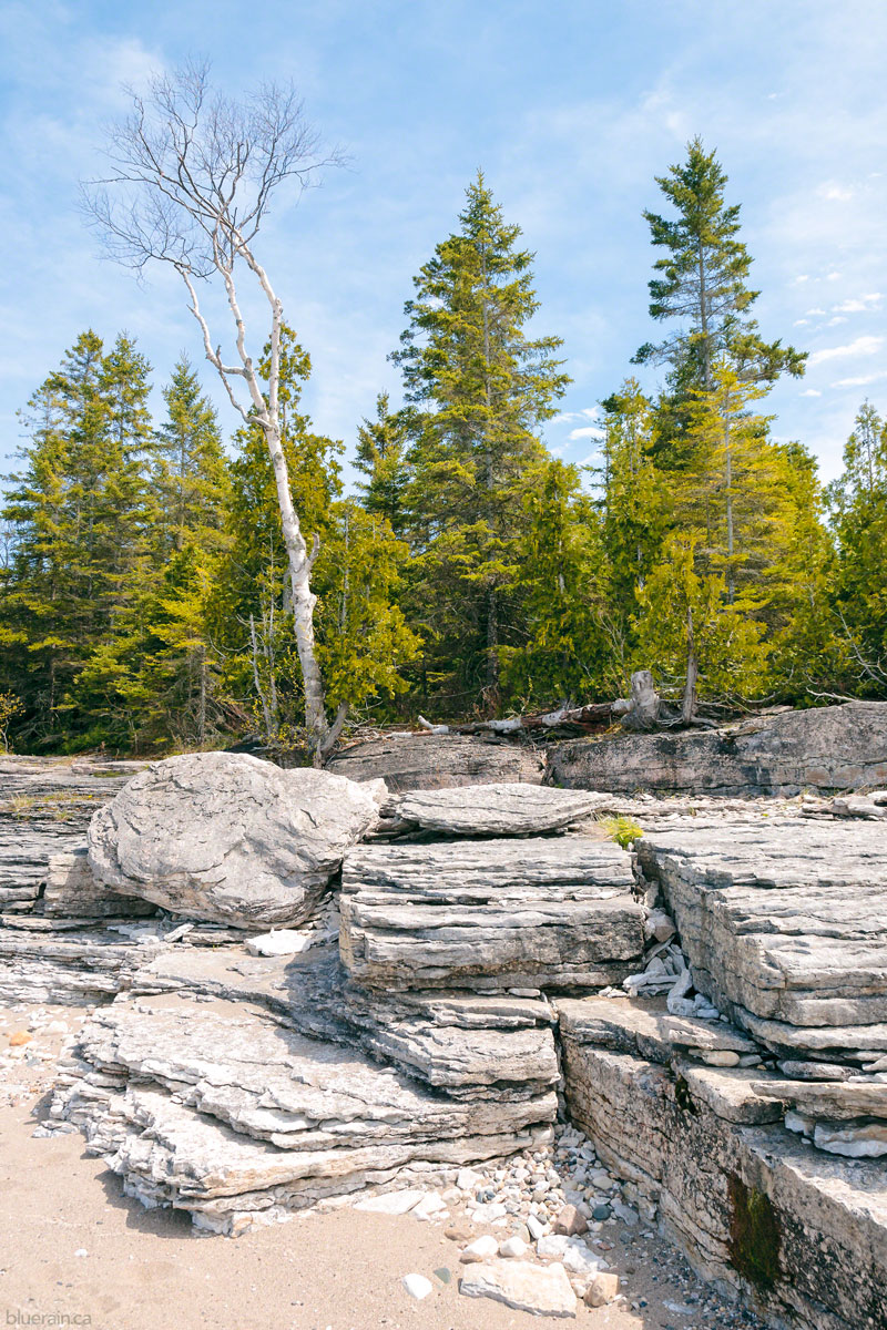 manitoulin-island-ontario-canada-providence-bay-rocky-shore-forest-spring