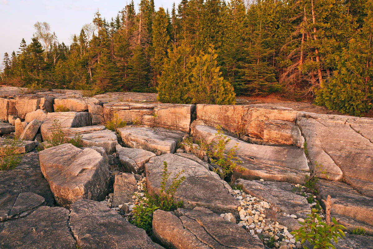 manitoulin-island-ontario-canada-providence-bay-forest-rocky-shore-spring-sunset-golden-hour