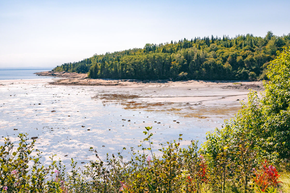 quebec-canada-st-lawrence-river-north-shore-low-tide