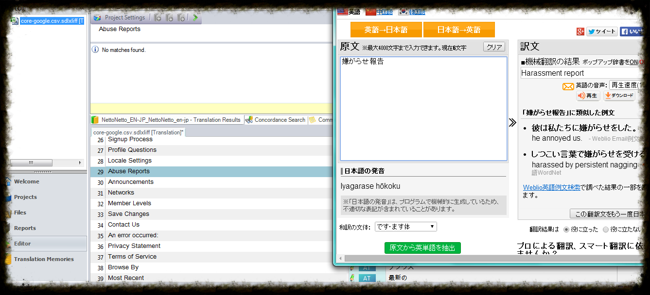 Example of translation patterns between foreign languages using SDL Trados 2014
