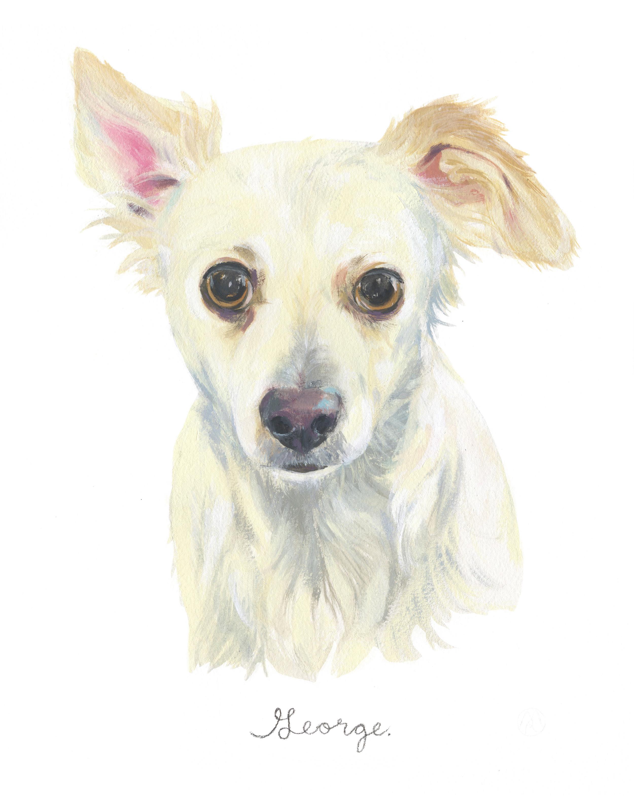 Pet Portrait_Tracey Wigfield copy.jpg