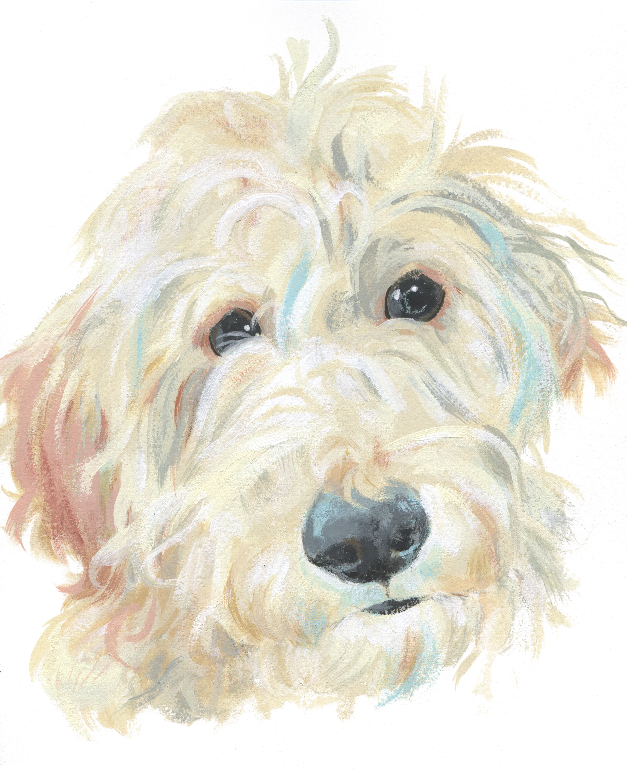 Pet Portrait_Sheri Maven New.jpg