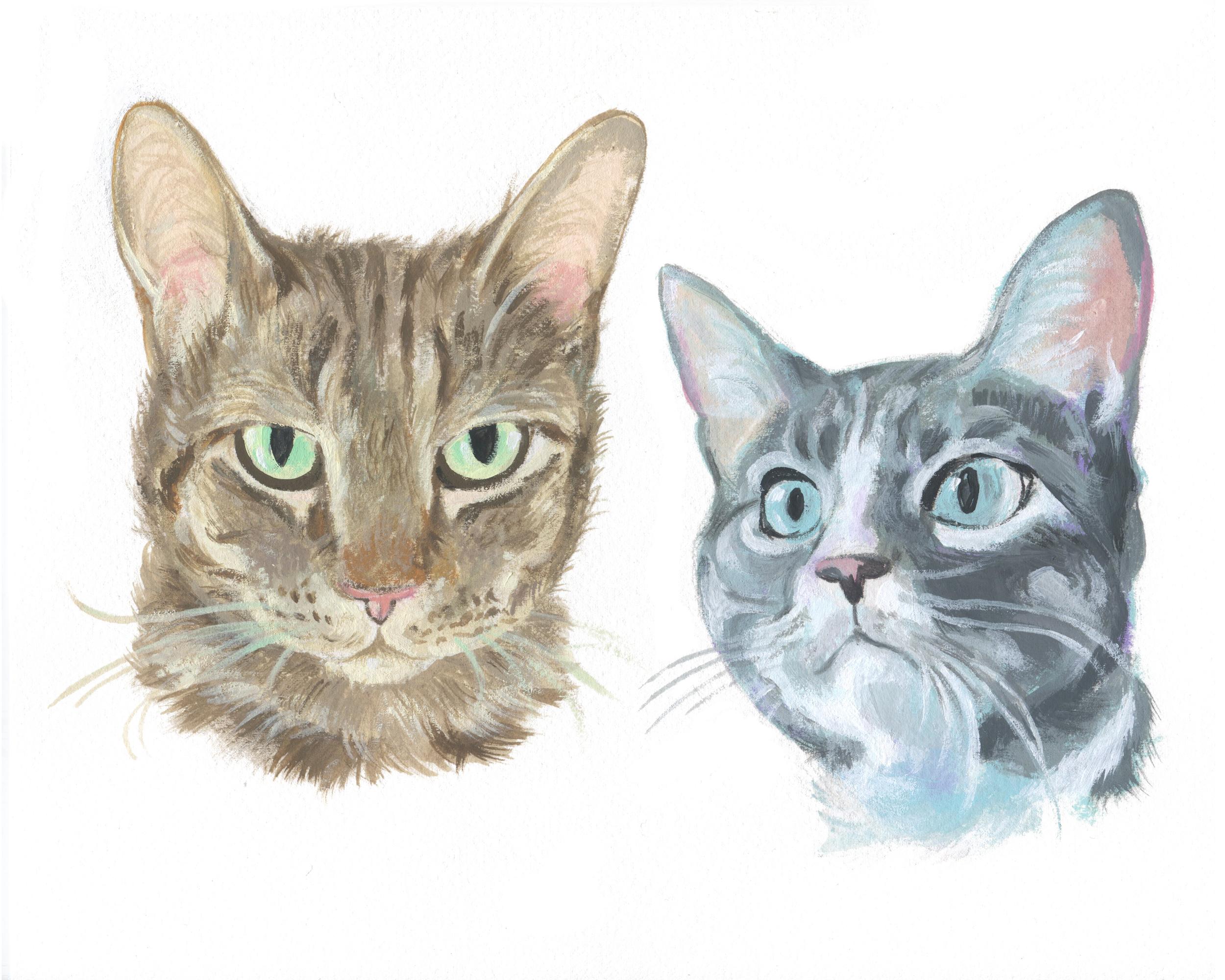 Pet Portrait_Alyssa Bishop.jpg
