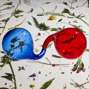 Dirty-Projectors-2.jpg