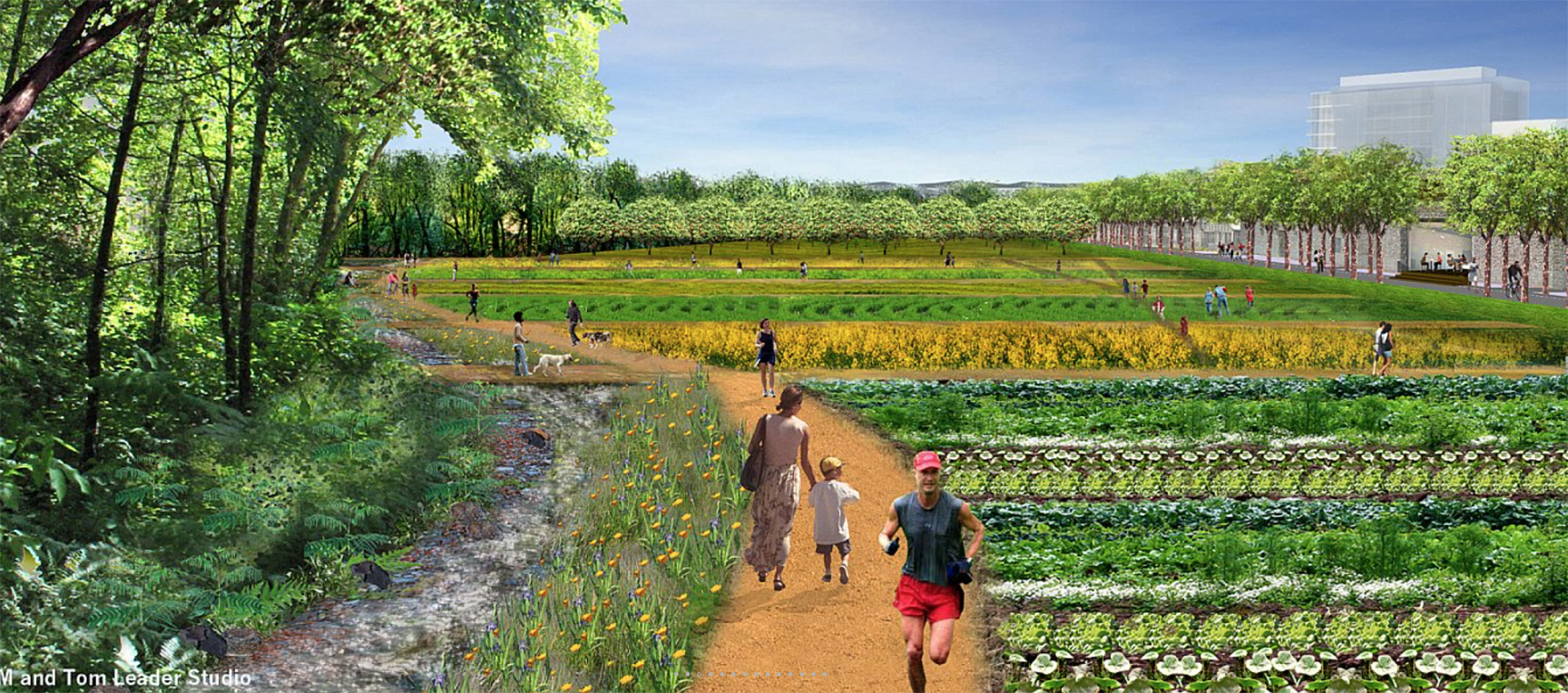 "The plans call for ""recreation, open space, and local food production"""