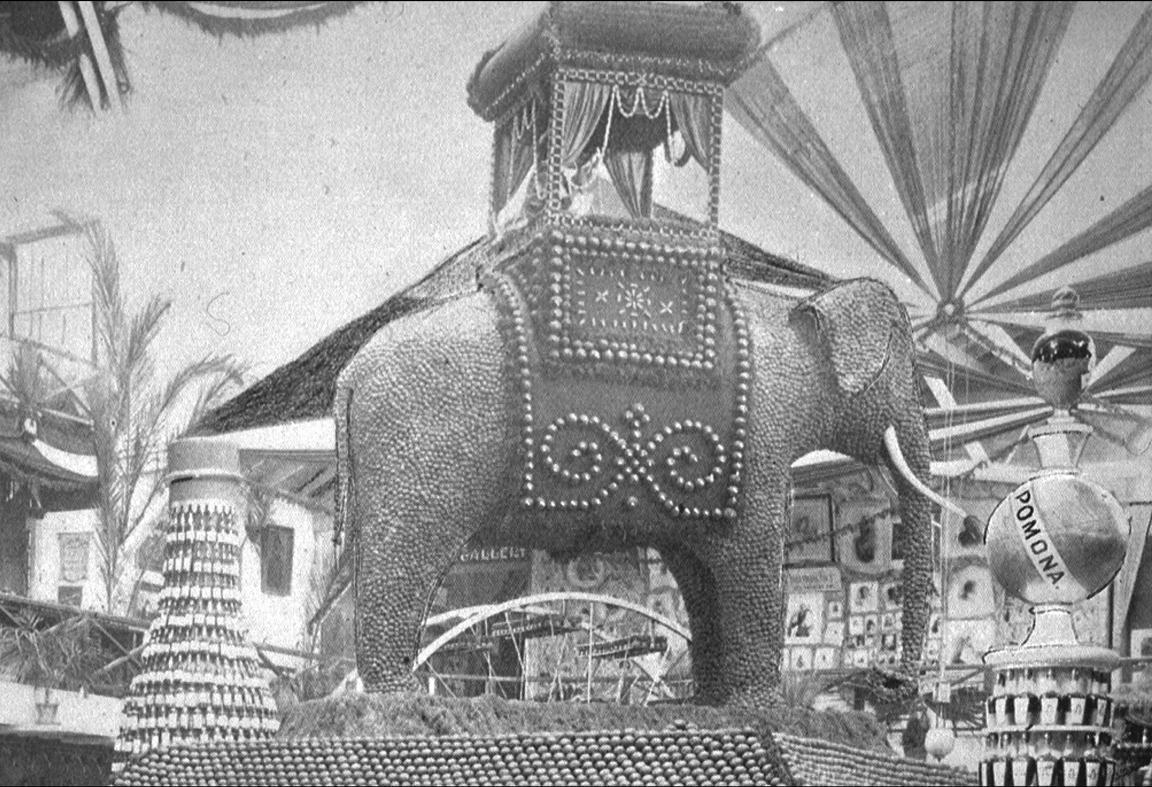 THE WALNUT ELEPHANT