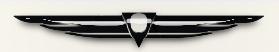 Black Glass Deco ornament.jpg
