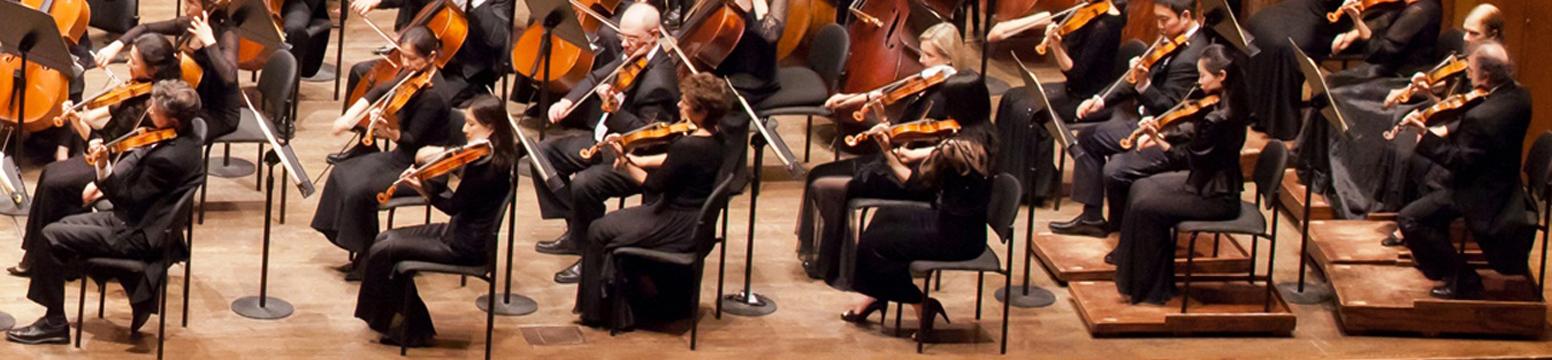 Second Violins.jpg