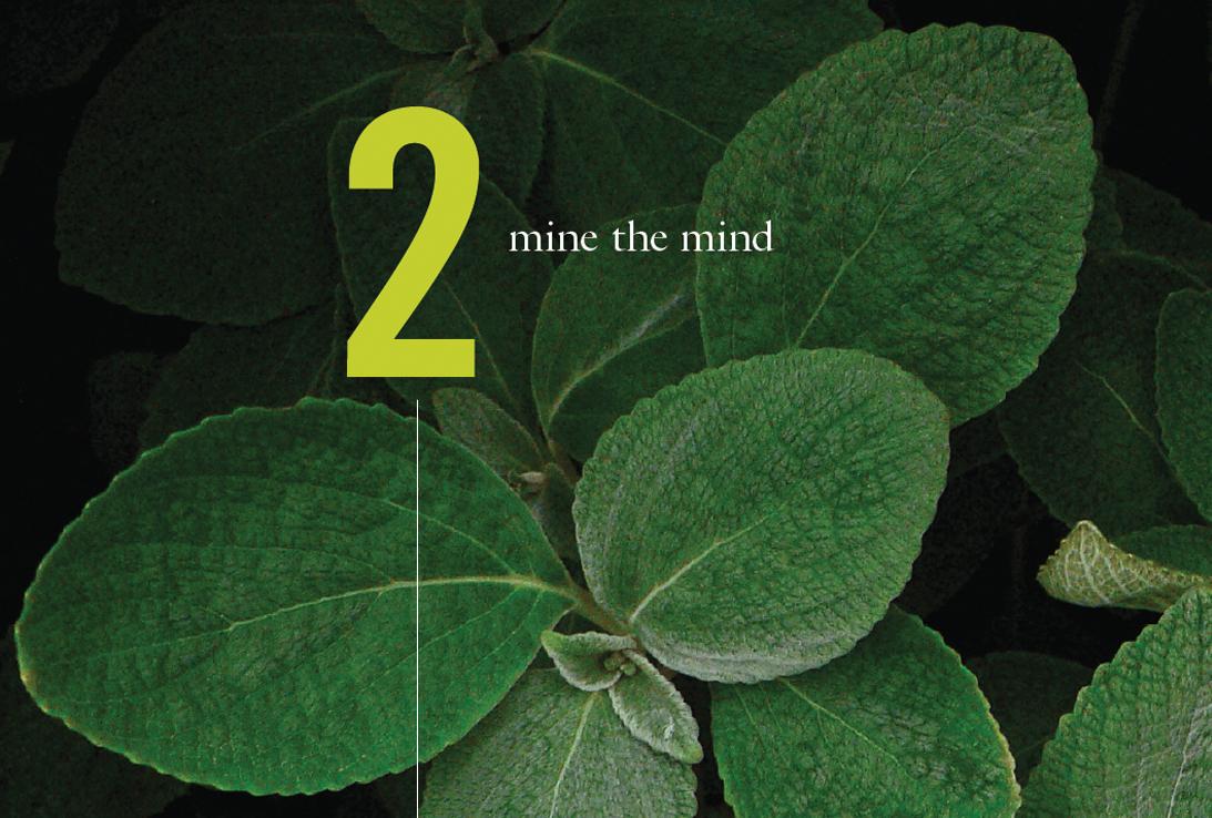 mine_the_mind.jpg