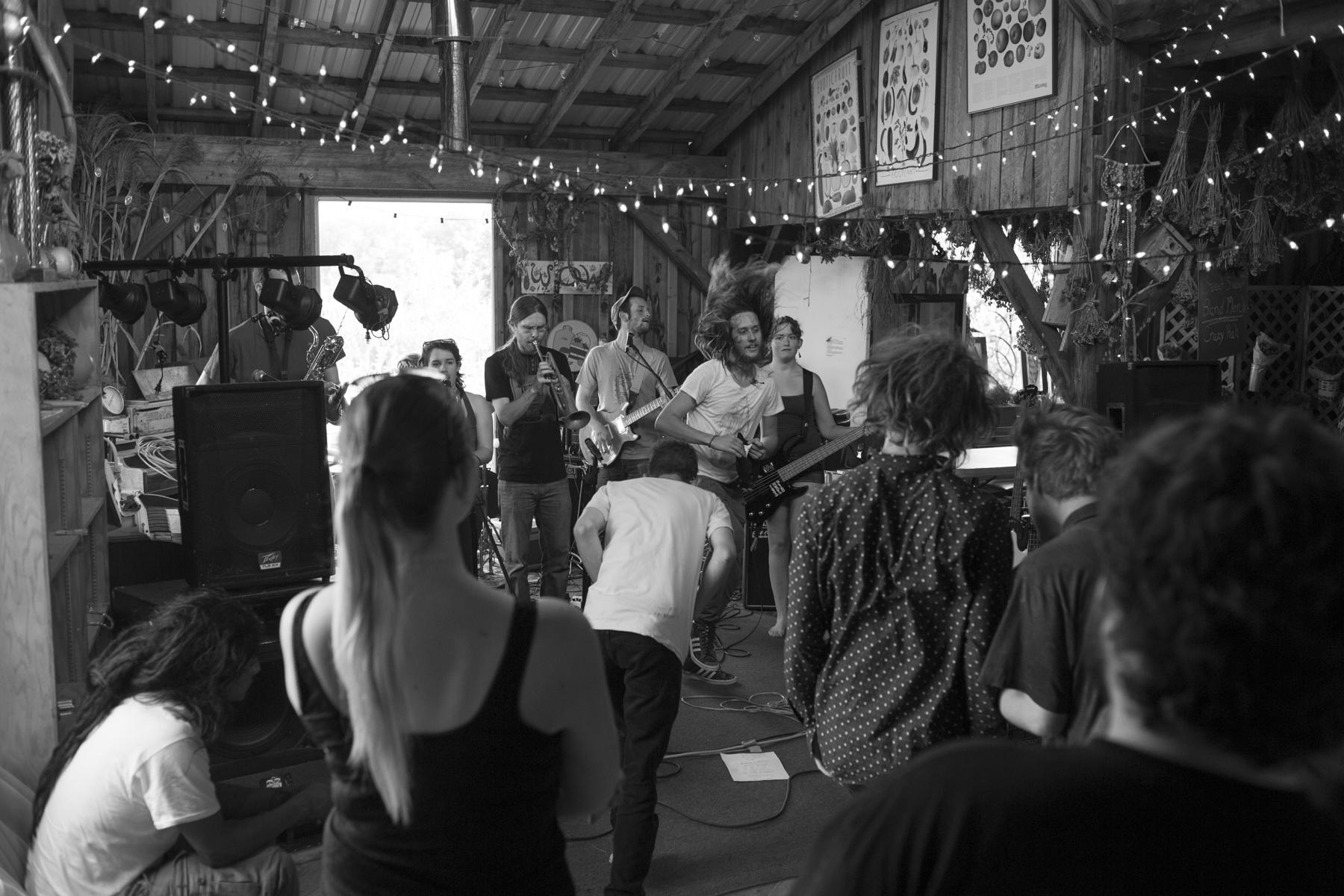 ¡Viva Mayhem! at Littletree Orchard. 2015.