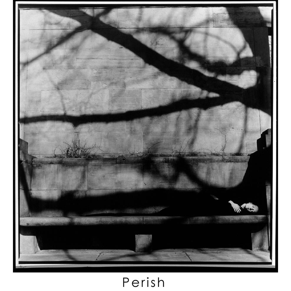 PERISH 14.jpg