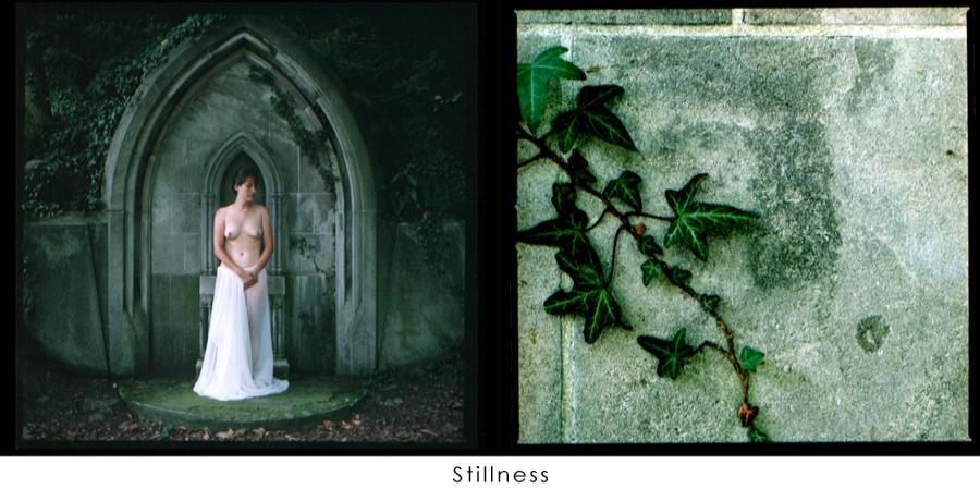 Stillness.jpg