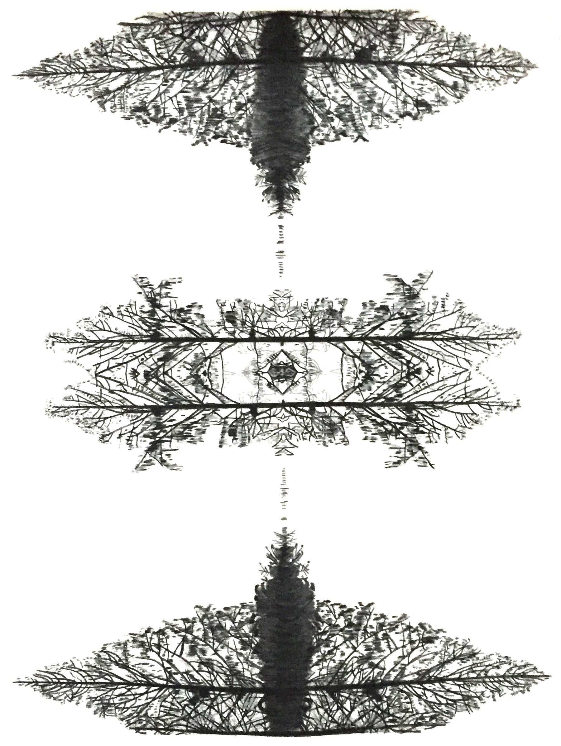Visual Deception lll (Silver).jpg