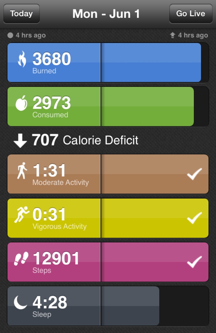 BodyMedia App - Stats for the day