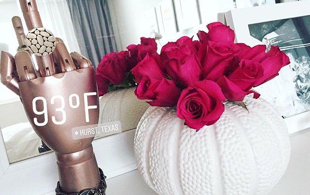 ᴵᵀ'ˢ ᶠ'ᴵᴺᴳ 🅽🅾🆅🅴🅼🅱🅴🆁 !!! . . . . . #November  #hotasballs #texasweather #recordhighs #weather #homedecore #designinspo #designlovers #designblogger #prettythings #designinspiration #interiordesign #interiors #interiordecor #decor  #decoreideas #homedecor #homedesign #homestyling #smallhome #apartmenttherapy #tinyhome #silentimageryhome #silentimagery #roses #pinkroses #flowers #indoorplants #thebird