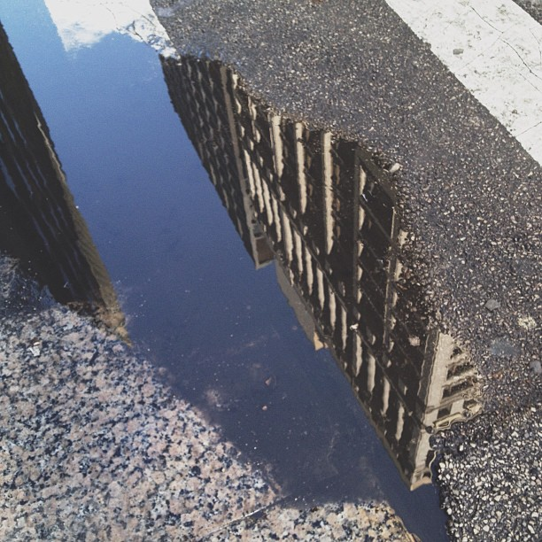 Reflections of Chicago artchitecture