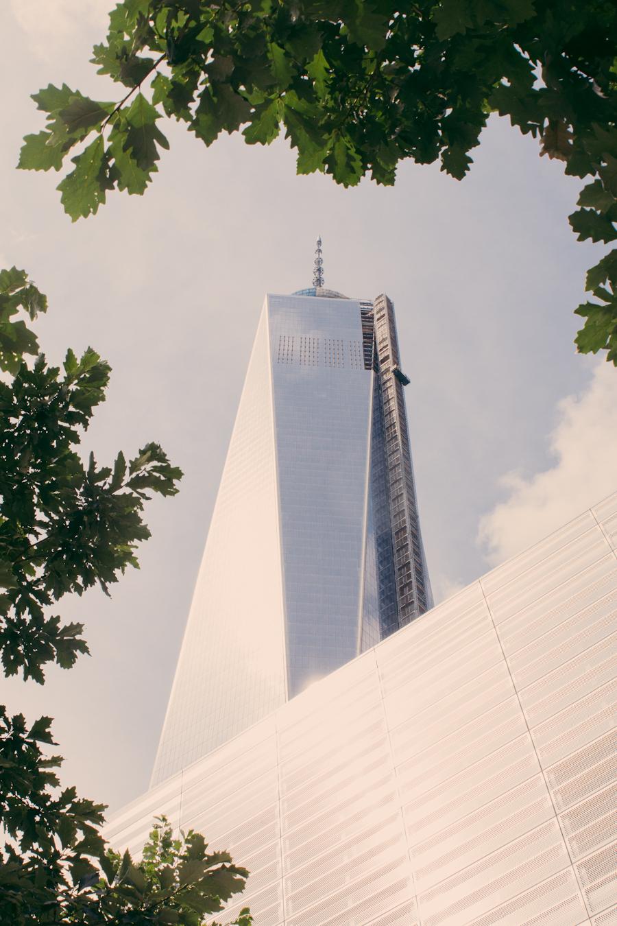 New York City by Bryna Shields