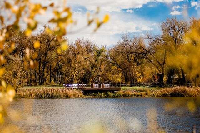 The leaves are changing even more around here!⠀⠀⠀⠀⠀⠀⠀⠀⠀ ⠀⠀⠀⠀⠀⠀⠀⠀⠀ #lakesideceremony #fallweddings #coloradoweddings