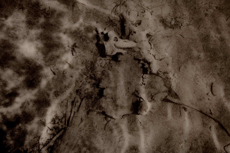 Underwater-24.jpg