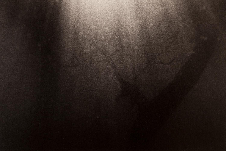 Underwater-37.jpg