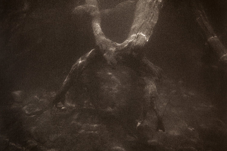 Underwater-14.jpg