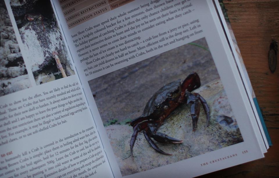 rivercottage_handbooks_4.jpg