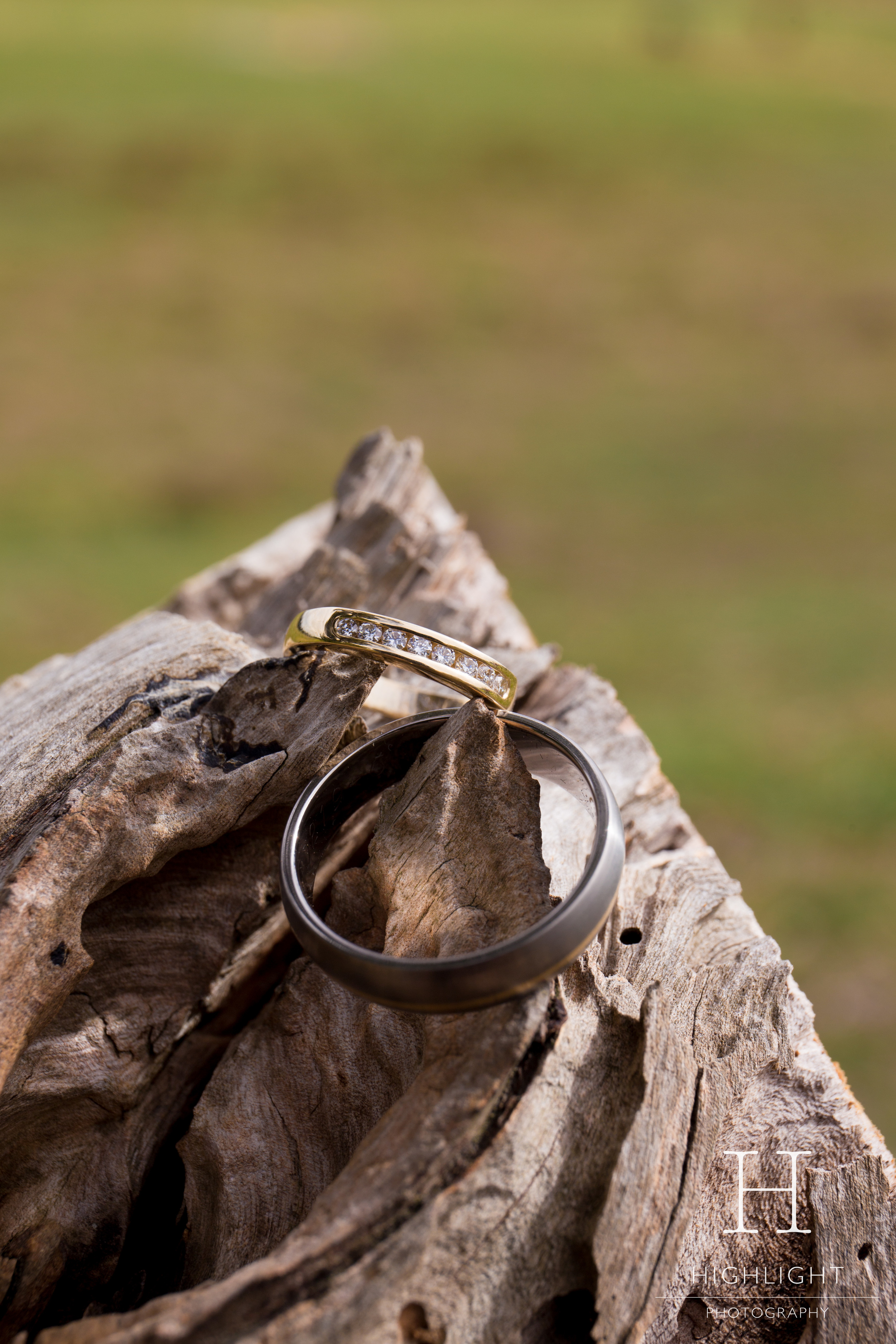highlight__wedding_photography_palmerston_north_rings.jpg