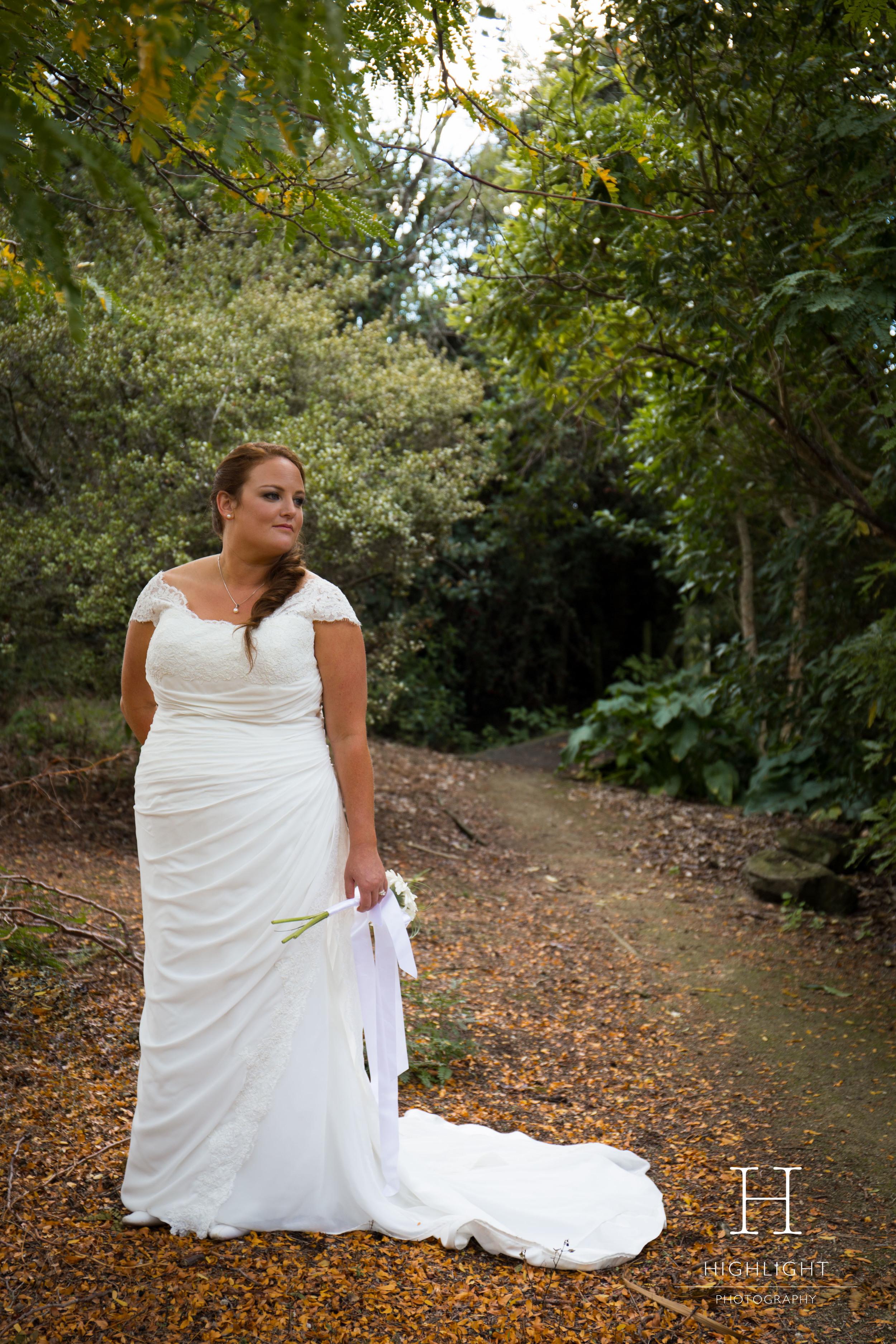 highlight_wedding_photography_palmerston-north_forest-bride_masterton_new_zealand.jpg