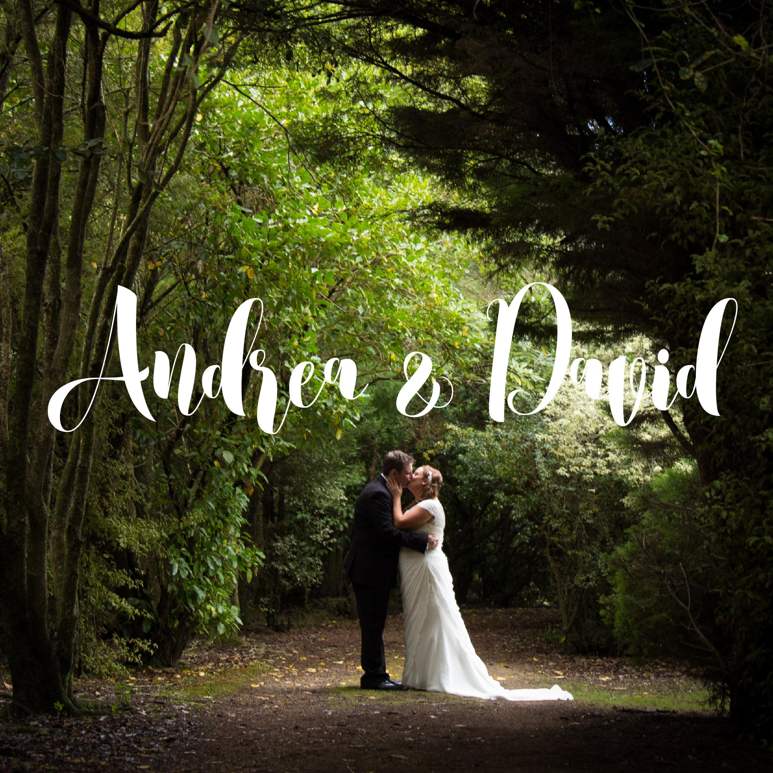 highlight-wedding-photography-masterton-new-zealand