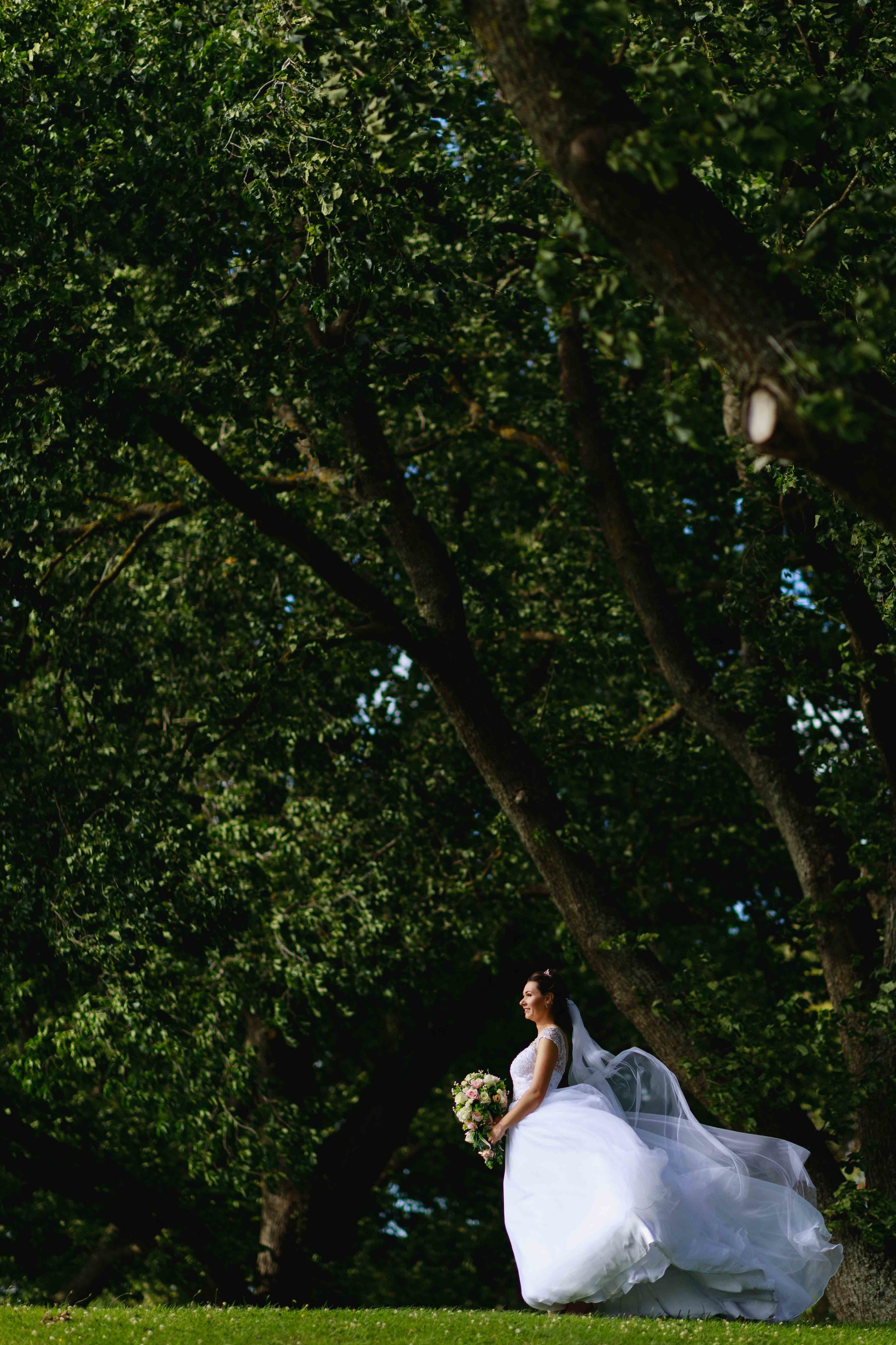 the-chalet-highlight-wedding-photography-palmerston-north-157.jpg