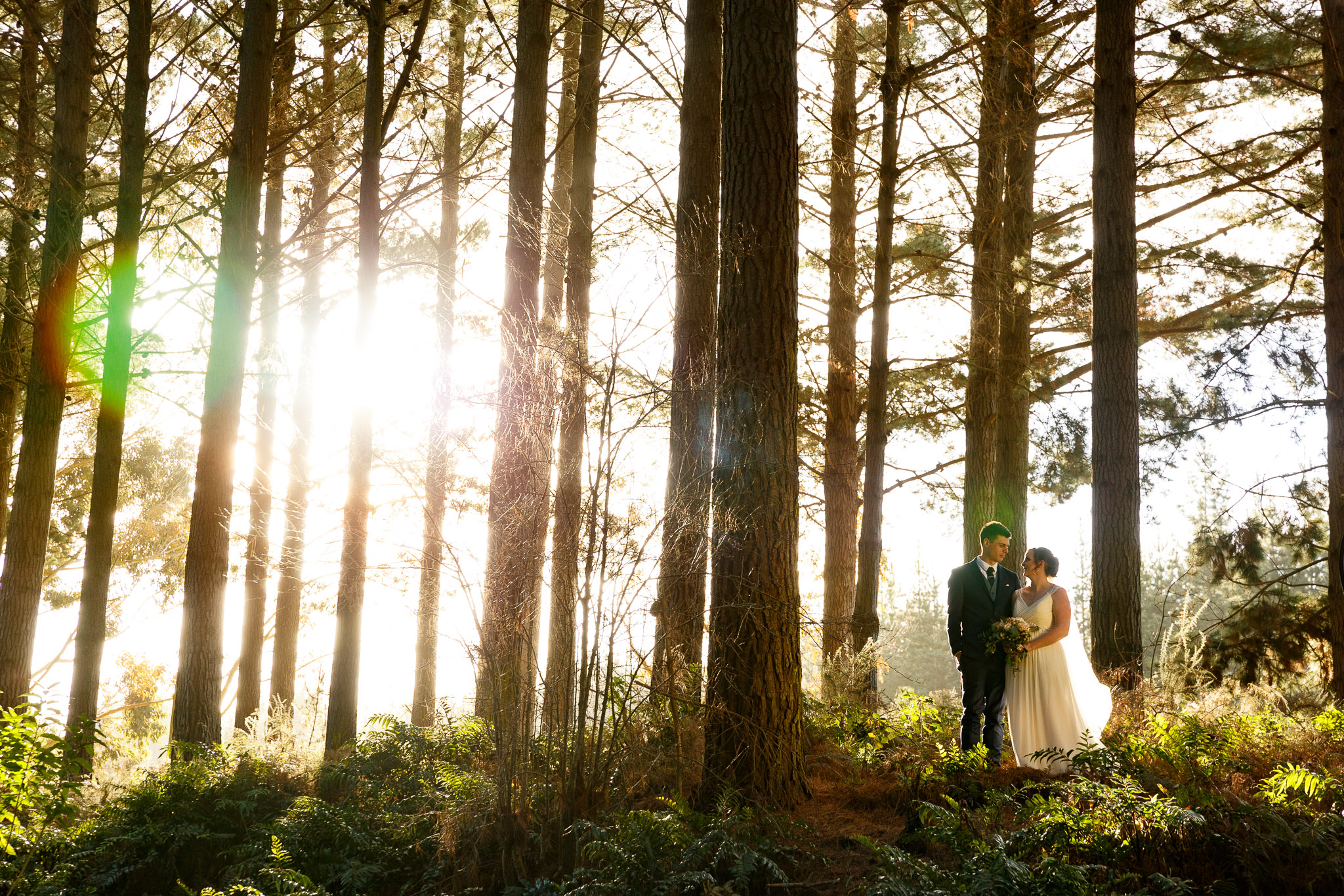 highlight-wedding-photography-new-zealand-palmerston-north-manawatu