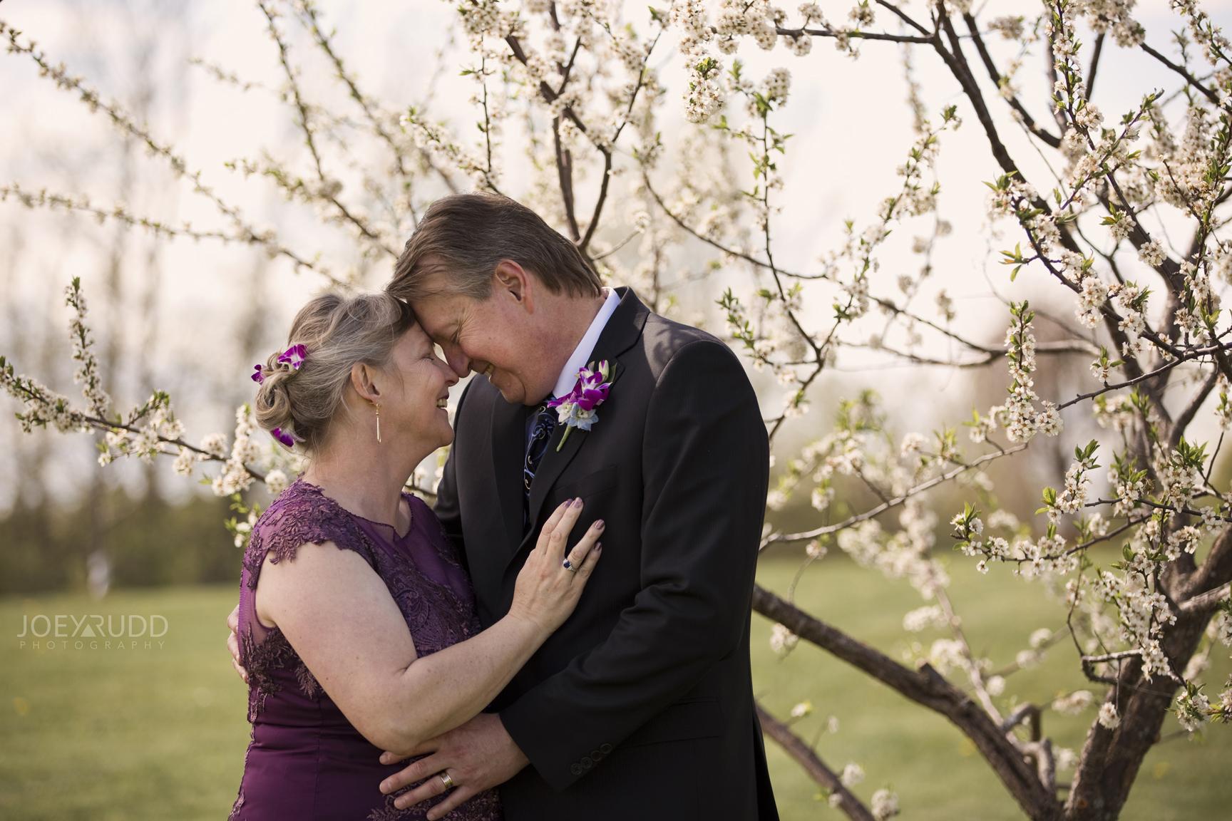Elopement Session at Jabulani Vineyard by Joey Rudd Photography Ottawa Wedding Photographer Blossom Tree