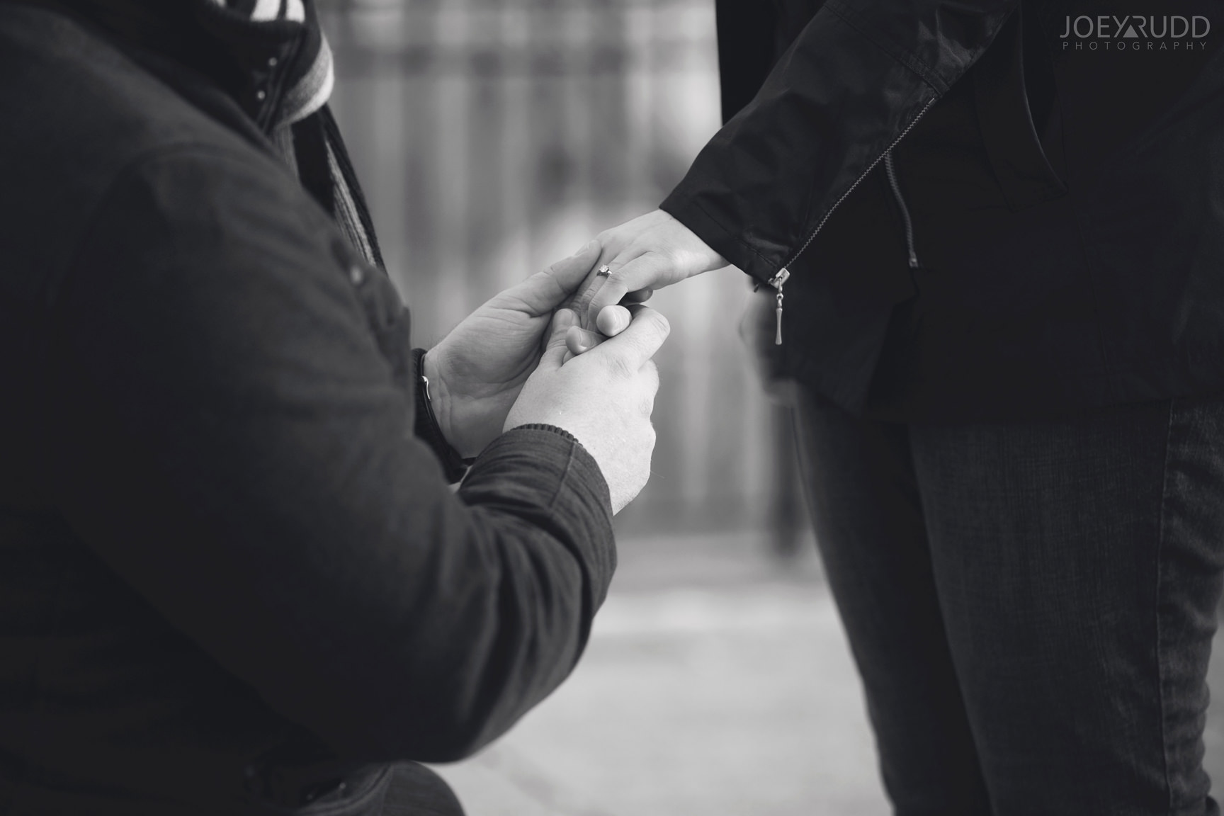 winter engagement at major's hill park by ottawa wedding photographer joey rudd photography ring