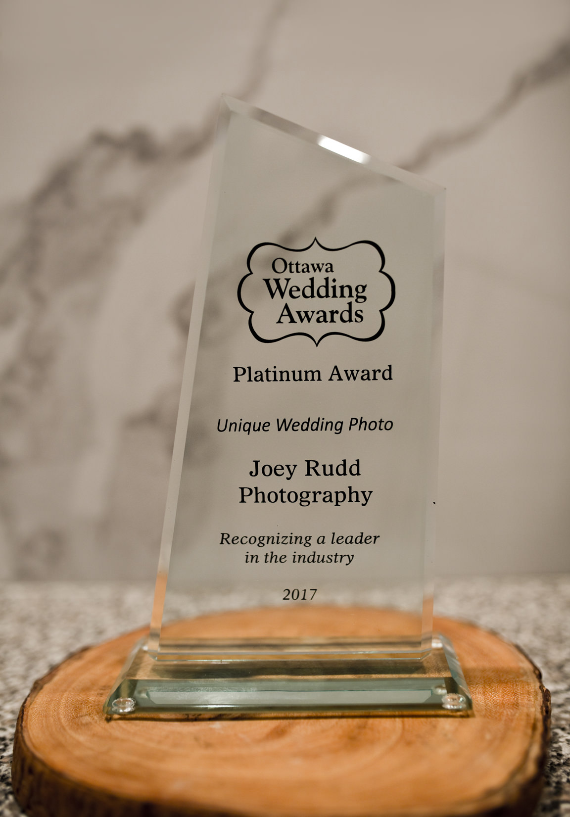 Ottawa Wedding Awards Platinum Award Ottawa Wedding Photographer Joey Rudd Photography Most Unique Photo
