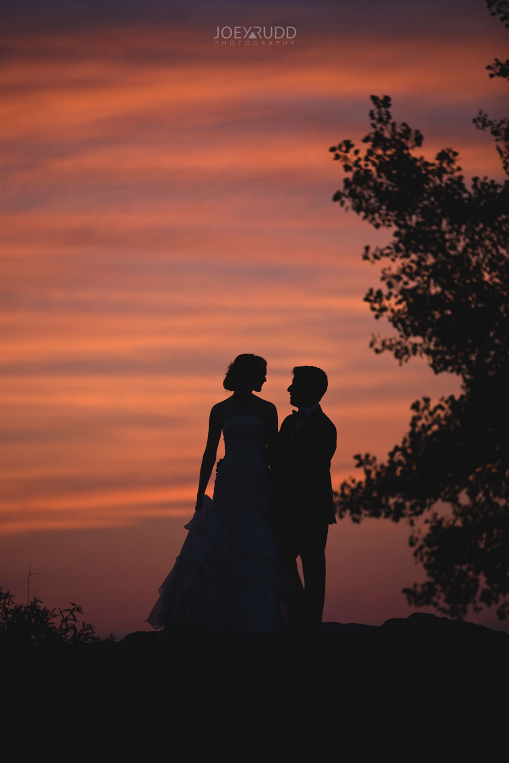 Ottawa Wedding Photos at Andrew Haydon Park and Brittania Beach by Ottawa Wedding Photographer Joey Rudd Photography Bride & Groom Photo Sunset Couple
