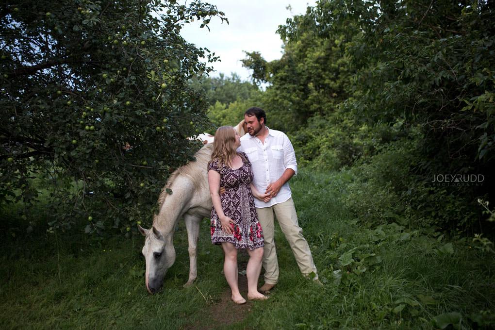 Engagement Session by Ottawa Wedding Photographer Joey Rudd Photography Fence Horse