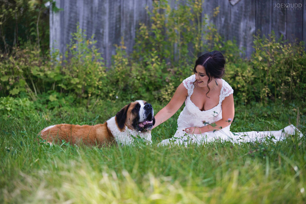 Bean Town Ranch Wedding by Ottawa Wedding Photographer Joey Rudd Photography field