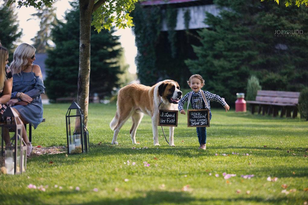 Bean Town Ranch Wedding by Ottawa Wedding Photographer Joey Rudd Photography ring bearer cute dog