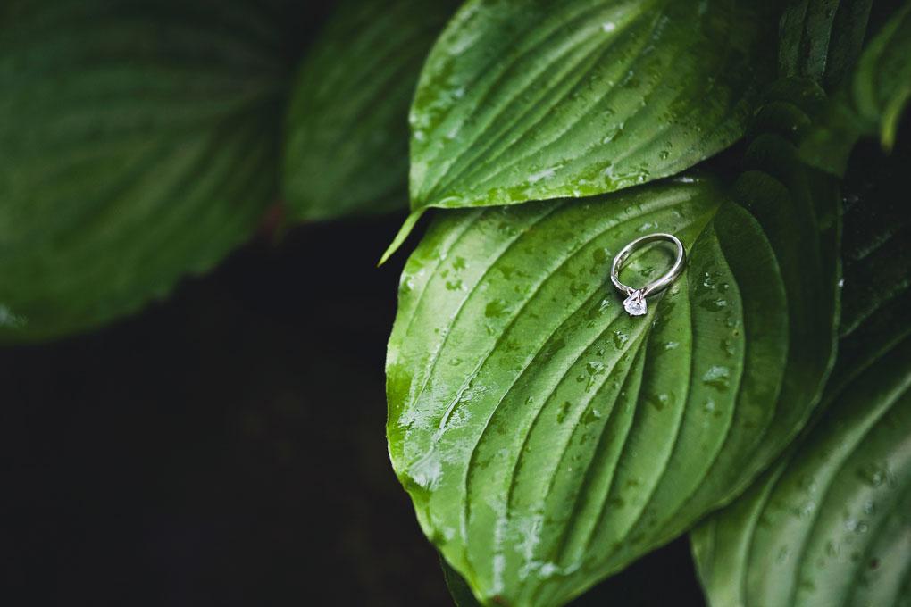 Rain on Wedding Day in Ottawa