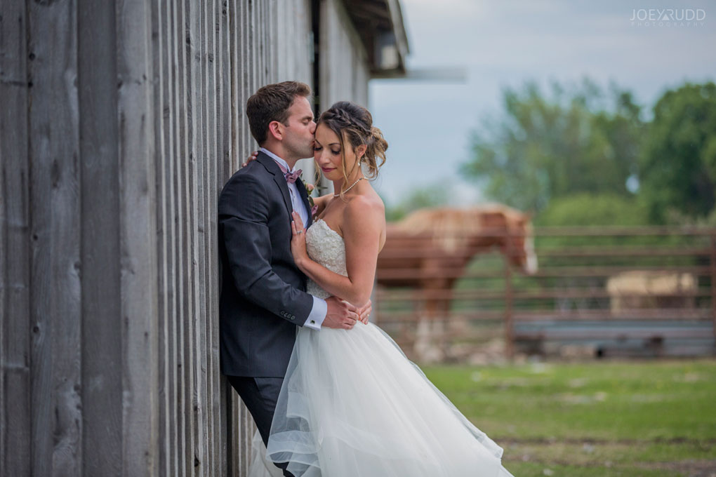 2018_05_26---Karine-&-Nick-722.jpgWedding at Stanley's Olde Maple Lane Farm, Wedding, Ottawa Wedding, Farm Wedding, Wedding at Farm, Photography, Ottawa Wedding, Ottawa Photographer, Ottawa Wedding Photography, Ottawa, Stanley's Wedding, Standly's Farm Wedding, Rustic Wedding, Barn Wedding, Horse, Carriage, Fireworks, Outdoor Ceremony, Photos from wedding at Stanley's, Wedding Photos from Stanley's Olde Maple Lane Farm, Bride and Groom, bridal party photos, horse, barn