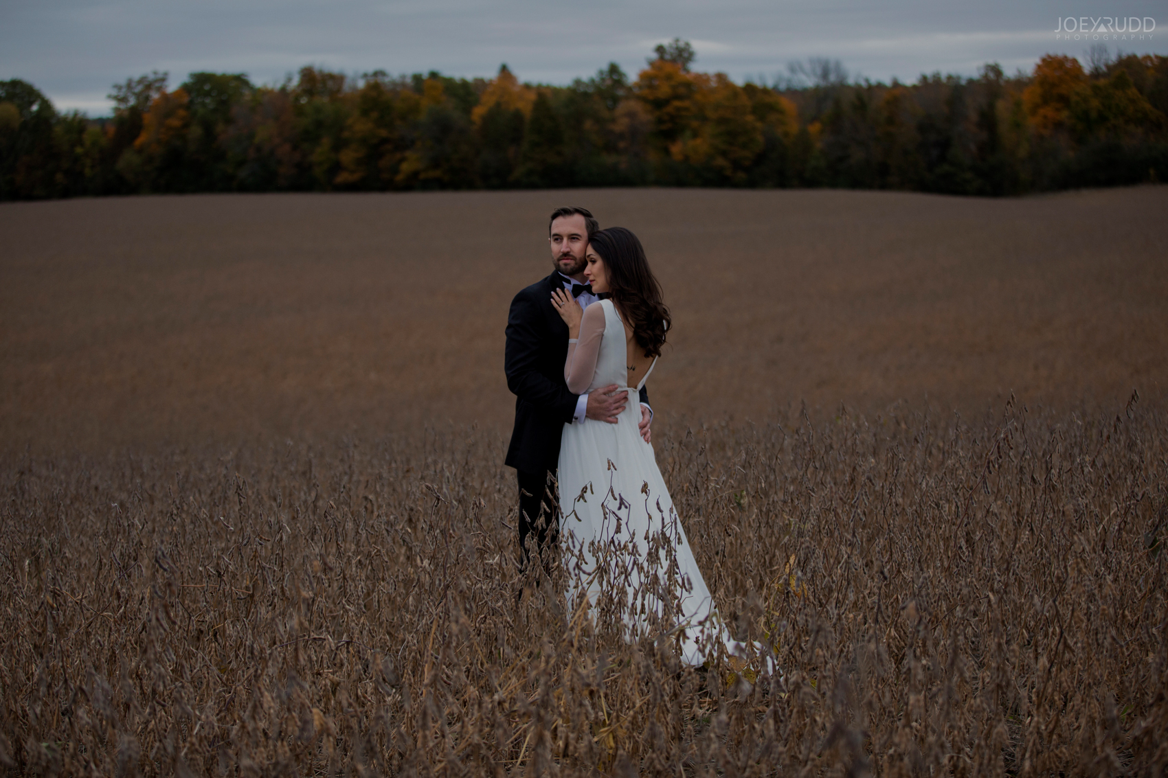 2018_10_07---Aksana-&-Mark-714TopRight.jpgEvermore Wedding, Evermore Wedding and Events, Ottawa Wedding, Almonte Wedding, Ottawa Photographer, Wedding Photography, Wedding Photographer, Joey Rudd Photography, Farm Wedding, Rustic Wedding, Barn Wedding Venue, Wedding Venue, Ottawa Wedding Venue, Almonte Riverside Inn, Candid, field wedding photo, dramatic photo