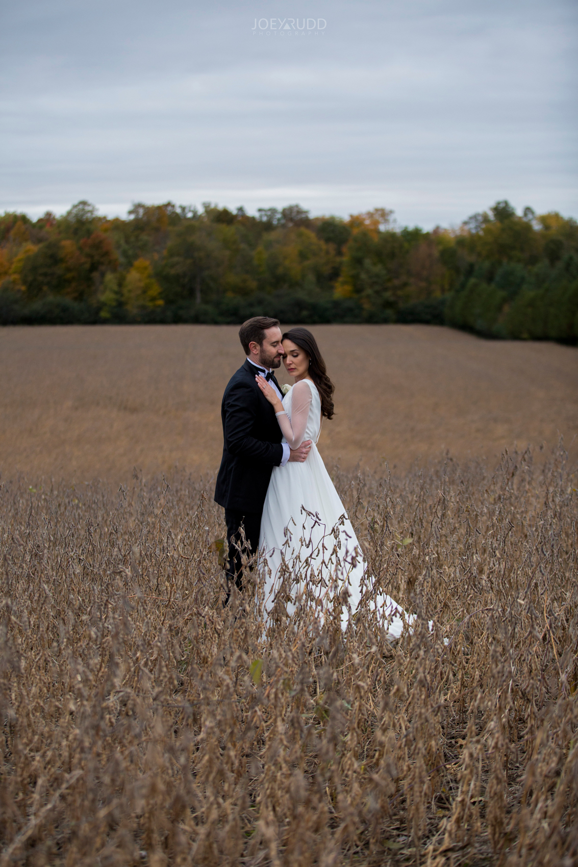 2018_10_07---Aksana-&-Mark-714TopRight.jpgEvermore Wedding, Evermore Wedding and Events, Ottawa Wedding, Almonte Wedding, Ottawa Photographer, Wedding Photography, Wedding Photographer, Joey Rudd Photography, Farm Wedding, Rustic Wedding, Barn Wedding Venue, Wedding Venue, Ottawa Wedding Venue, Almonte Riverside Inn, Candid, field wedding photo, posing