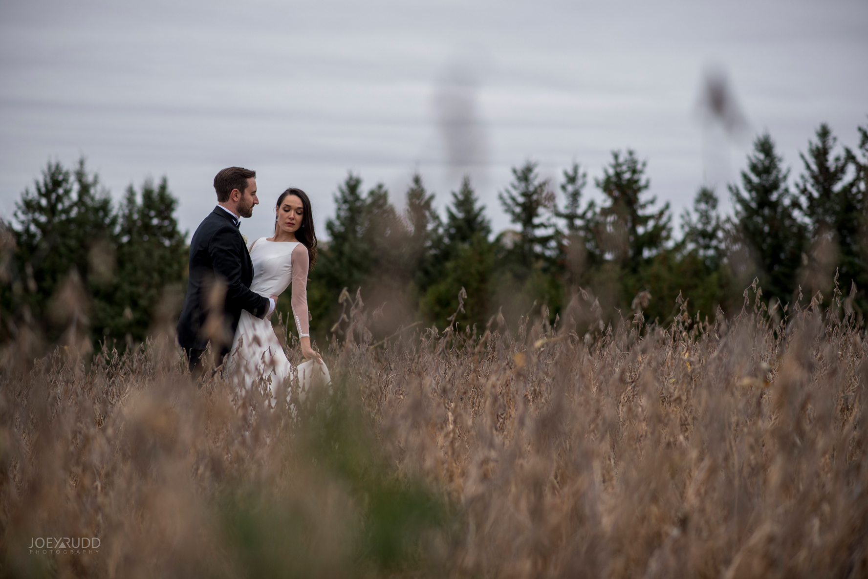 2018_10_07---Aksana-&-Mark-714TopRight.jpgEvermore Wedding, Evermore Wedding and Events, Ottawa Wedding, Almonte Wedding, Ottawa Photographer, Wedding Photography, Wedding Photographer, Joey Rudd Photography, Farm Wedding, Rustic Wedding, Barn Wedding Venue, Wedding Venue, Ottawa Wedding Venue, Almonte Riverside Inn, Candid, field wedding photo, posing the bride and groom