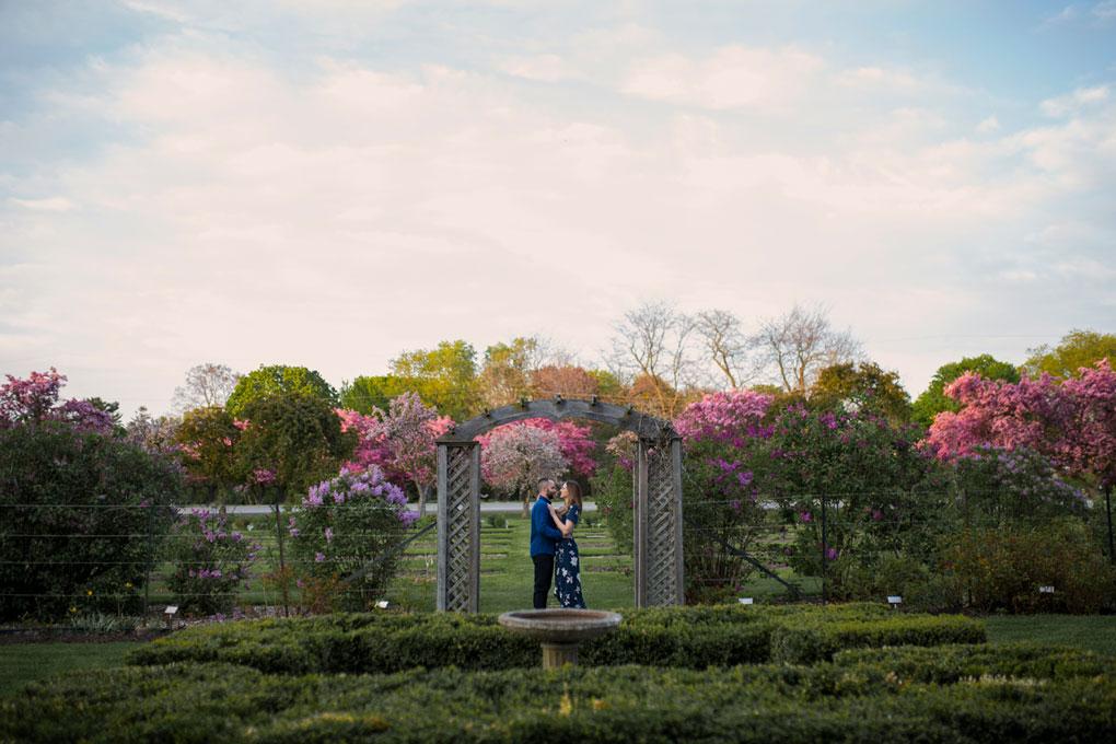Engagment photos in Ottawa, Ottawa Wedding photographer, engaged, arboretum, experimental farm, ornamental gardens, cherry blossoms, double exposure, multiple exposure, photography, wedding photography, wedding photographer