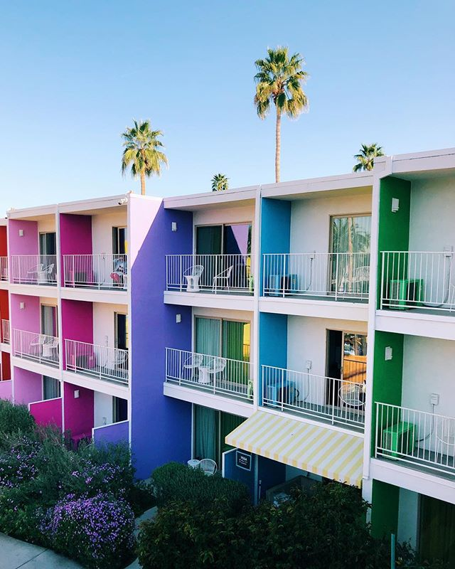 GET SOME COLOR. What is your soul color!? 🌈 . . . #saguarohotel #palmsprings #rainbow  #color #colorstory #altsummit