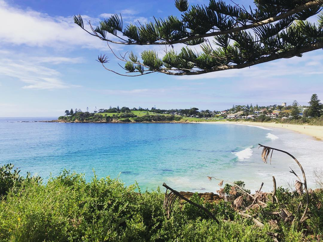 Anyone who knows me, knows how much I love things blue and green plus all those shades in between. Grateful that the sun eventually came out to play today. 😁  #Bermagui  — in  Bermagui, New South Wales .