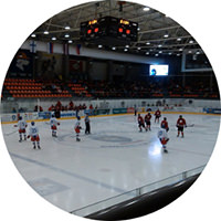 dehumidifiers for ice rinks